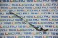 Петля Acer Aspire one D255 D522 Левая AM0DM000200