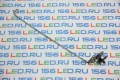 Петля HP G6-1000 Левая FBR15003010 под LED-матрицу