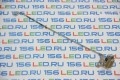 Петля Lenovo G560 G565 Z560 Z565 Правая AM0BP000300